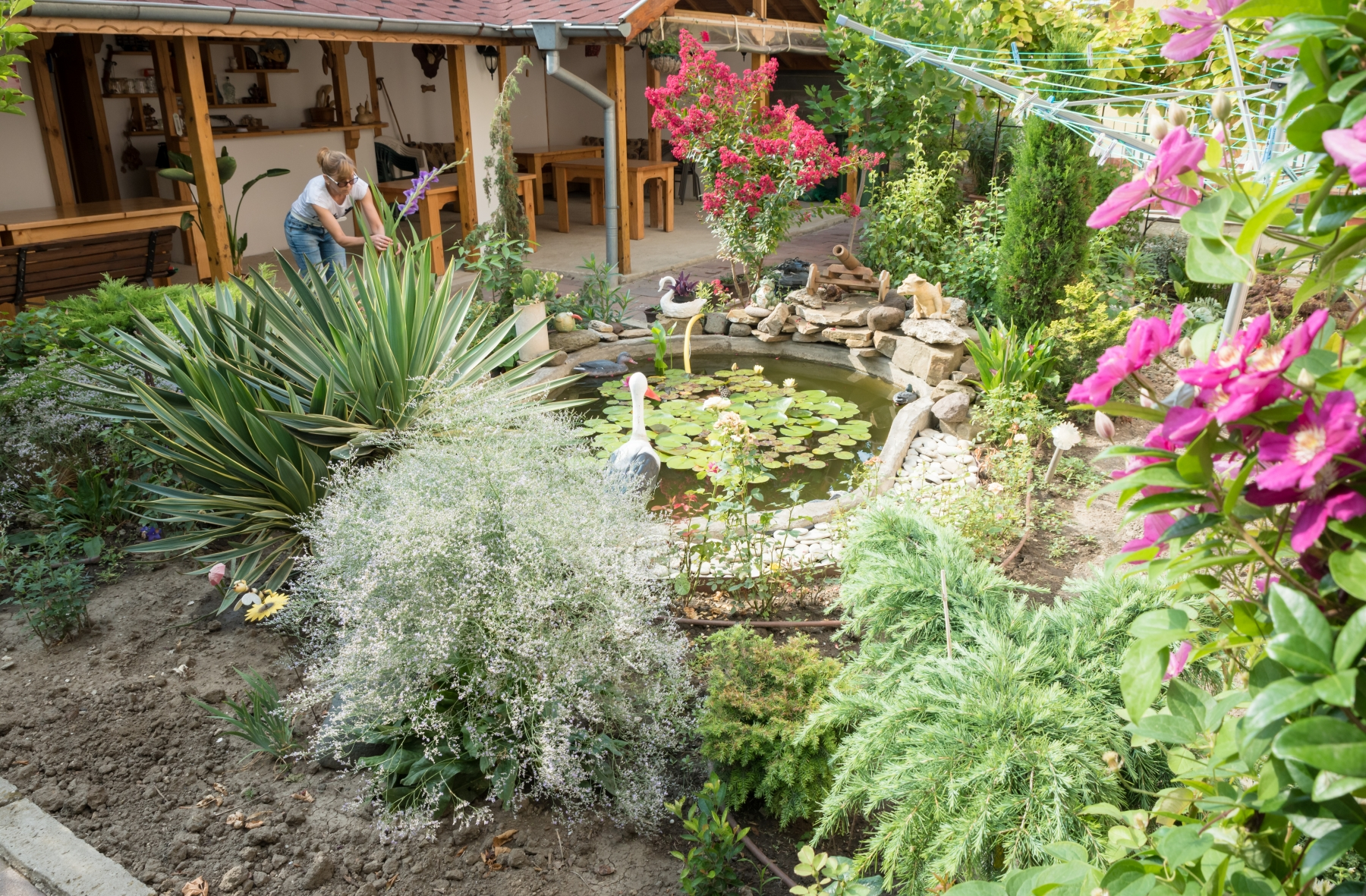 Екзотична градина с редки растения и цветя, две малки езерца с декоративни рибки и просторен навес с барбекю в задния двор.